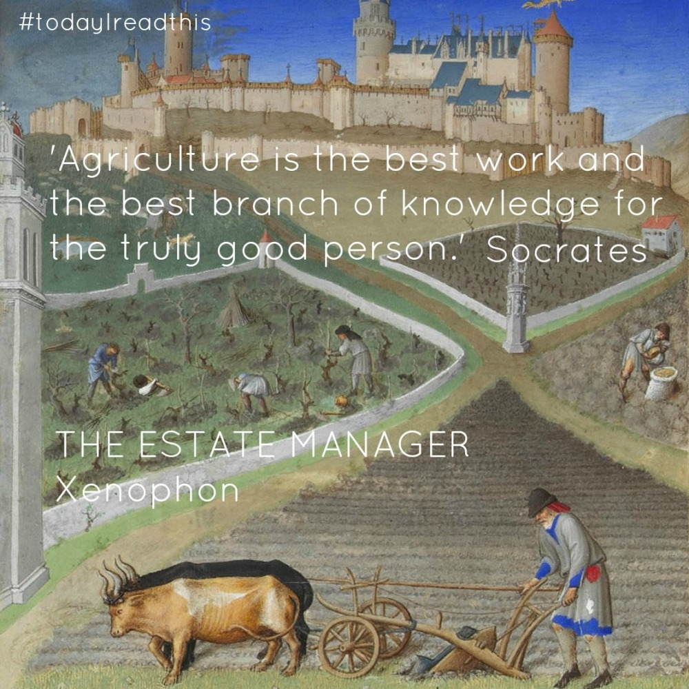 Estate Manager.jpg